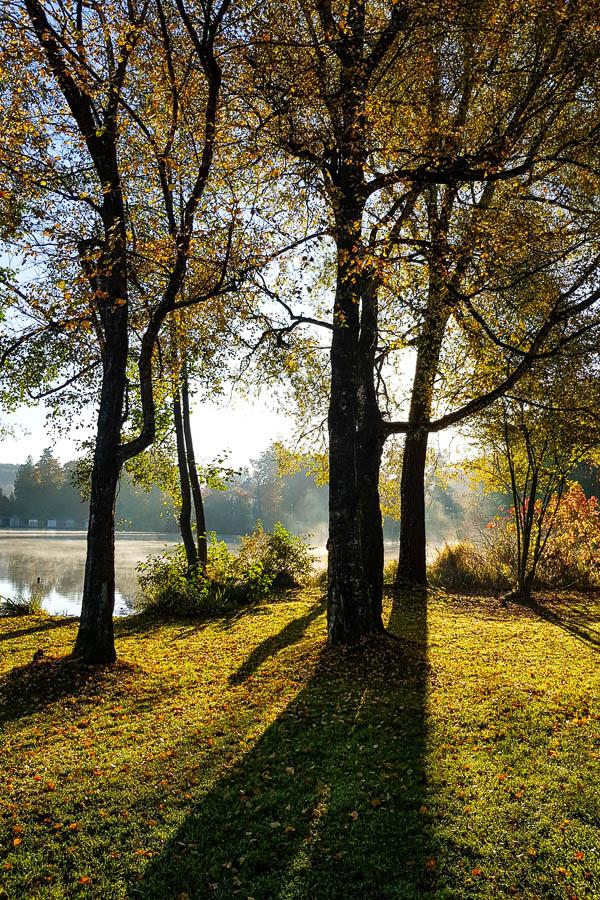 Gegenlicht am Weßlinger See