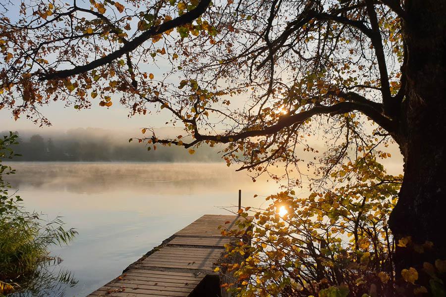 Morgenstimmung am Weßlinger See - ideal für einen frühen Spaziergang